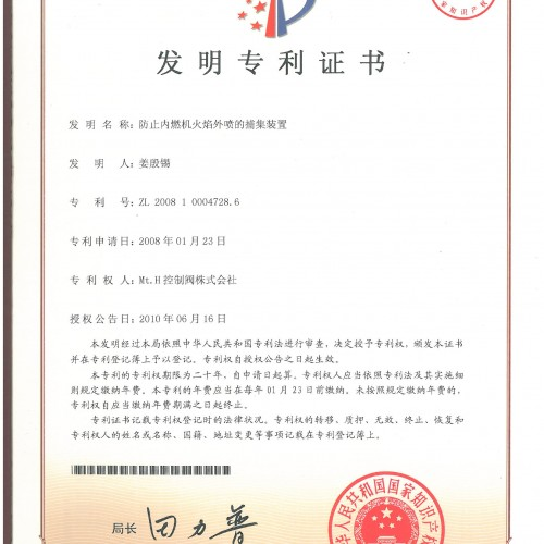 Patent (China) ZL2008 1 0004728.6 ; Internal combustion engine flame trap device preventing eruption & hoerbiger